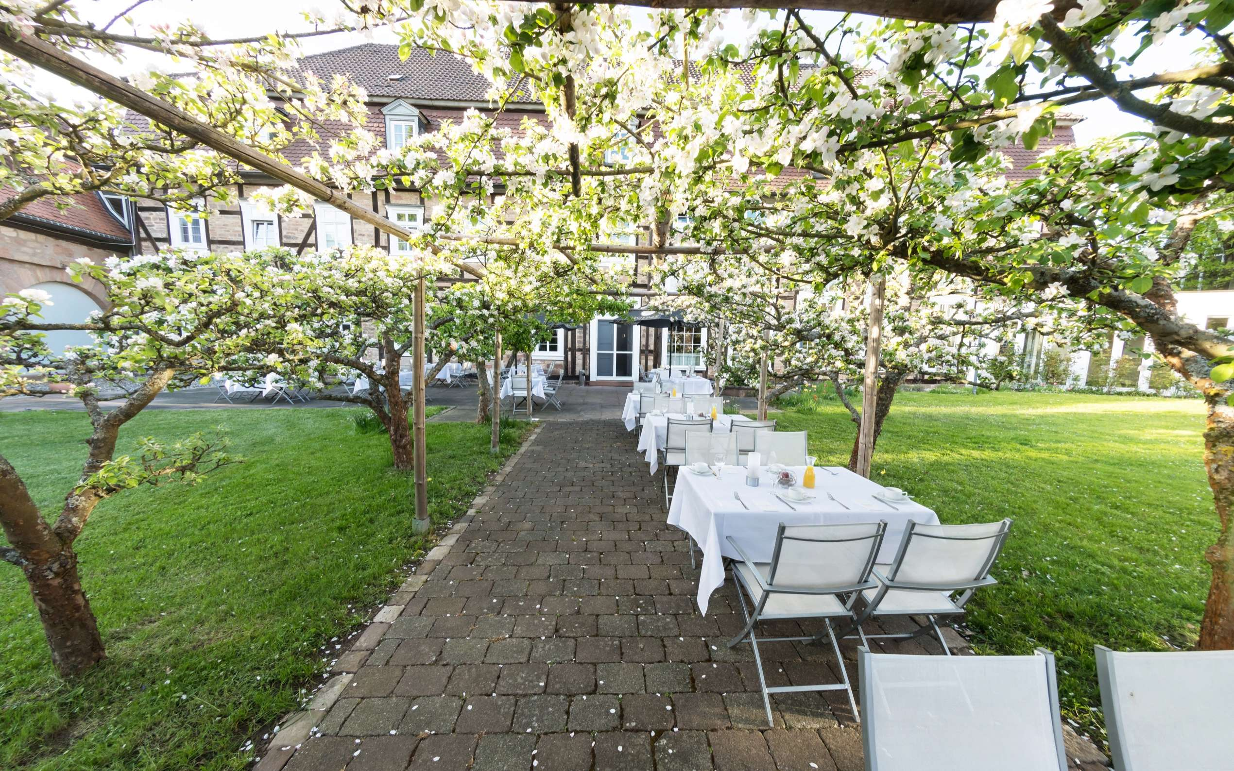 Welcome Hotel Bad Arolsen Restaurant Orangerie Terrasse 02